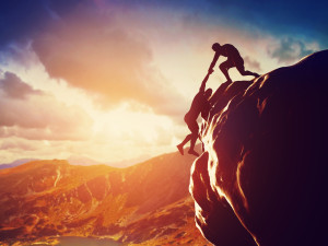help you succeed